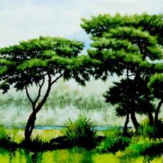 양평솔 숲
