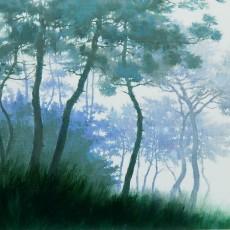 소나무 숲 1