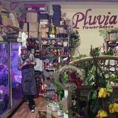 꽃집 플루비아
