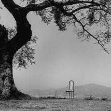풍경이 된 의자