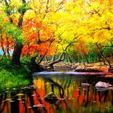 가을계곡1-1