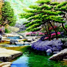 계곡의 봄