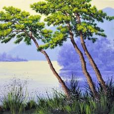 소나무 숲