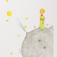 소행성 B-612의 어린왕자